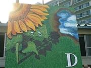2006年度Dブロック - 向日葵 -