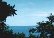沖縄を考える会