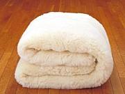 毛布から離れられない会。
