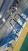 長岡技術科学大学水泳部