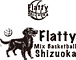 Mixbasket Flatty 静岡バスケ