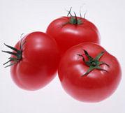 生トマト嫌い