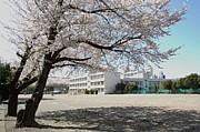 福田小学校☆第30期☆