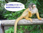 2006/12/2 YK2次会交流場