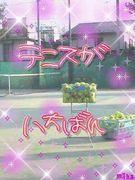 兵庫のテニスっ子♡