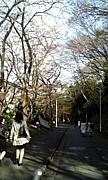 日本女子大学☆心理学科
