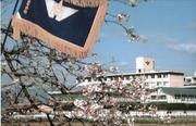京都府立商業高校(現すばる高校)