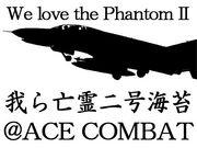 F-4 PhantomII riders Squadorn
