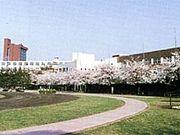 日本大学櫻丘高校 陸上部