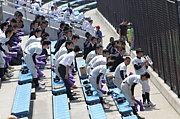 立教新座高校野球部応援団
