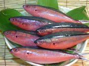 沖縄★釣り