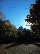 武蔵野キャンプカウンセラー
