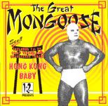 The Great Mongoose