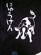2009年 乳牛研究会