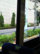 バスから見る景色。