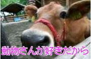 ☆肉食中止運動☆