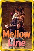 POPSバンド【Mellow Line】
