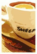 cafe��SHEEP