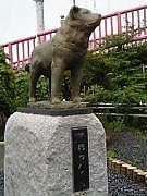 秋田県北会in北海道教育大学函館