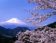 秋田-横浜-名古屋-東京友の会