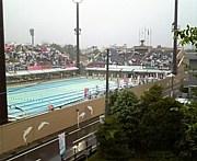 埼玉の高校生スイマー