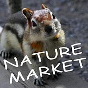 ネイチャーマーケット