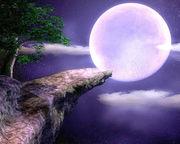 月夜に提灯