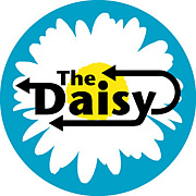 the daisy