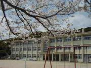 宮津市立 養老小学校・中学校