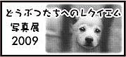 ☆Animal Meeting☆