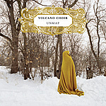 Volcano Choir(BonIver&CoCoB)