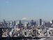 首都東京特別区 23区
