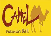 Backpacker's BAR CAMEL