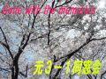 山辺中/元3−1【佐藤クラス】