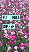 FULL FULL SHAKER