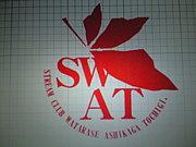 SWATхSWAT