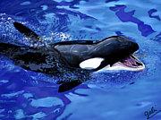 orca (a cappella)