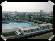 鳥栖高校水泳部