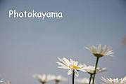 ★Photokayama★