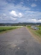 田舎の道が好き