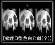 【蠍座B型色白の雌(♀)】