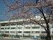 菊川小学校2000年3月卒業生☆