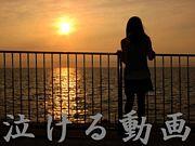 泣ける動画