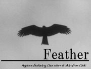 Feather (Nujabes)