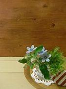 小さな花教室 madone k