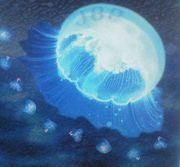 Jellyfish Brass Plop!!