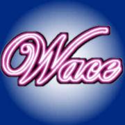 中京大起業サークル『Wace』