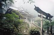 癒しと蘇りの地熊野(十津川)