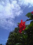沖縄で写真!