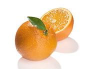 オレンジの会in徳島